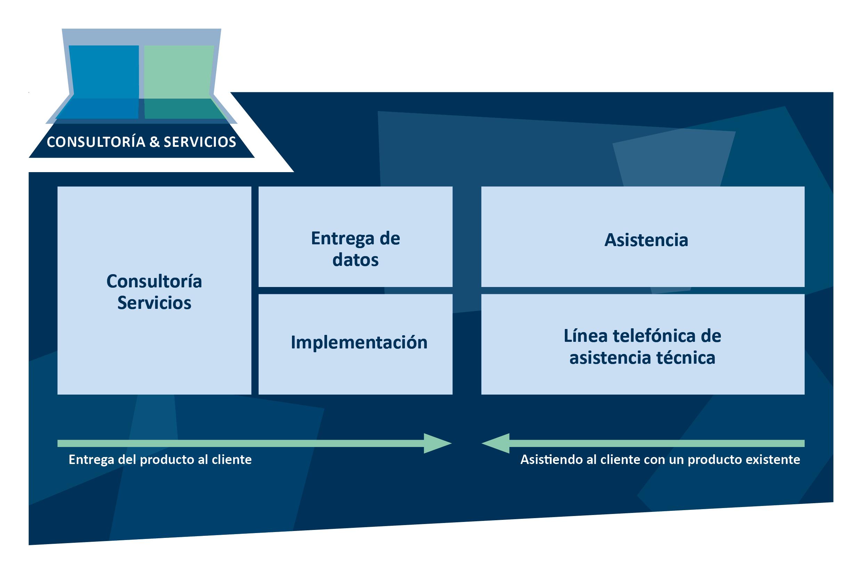 Esquema TecAlliance Consultoría y servicios