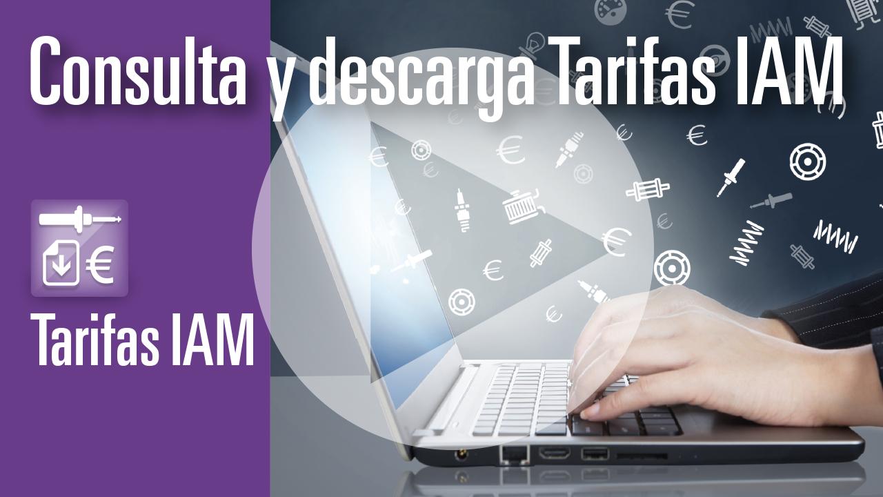 Consulta y descarga tarifas de recambios IAM (VÍDEO)